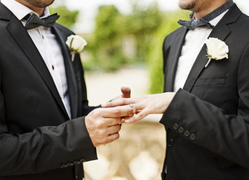 "< img src=""https://www.la-notizia.net/omosessuali"" alt=""omosessuali"""