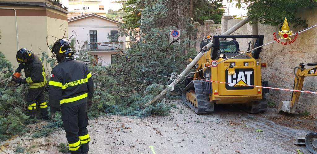 "< img src=""https://www.la-notizia.net/emergenza"" alt=""emergenza"""