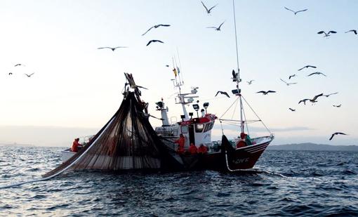 "< img src=""https://www.la-notizia.net/pesca"" alt=""pesca"""