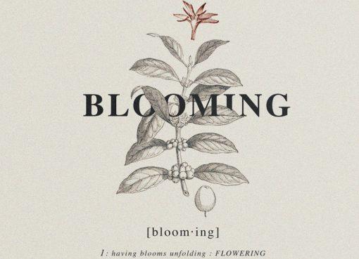 """< img src=""""https://www.la-notizia.net/blooming"""" alt=""""blooming"""""""