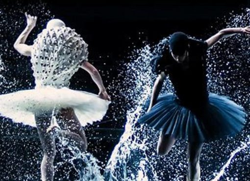 balletto a swan lake