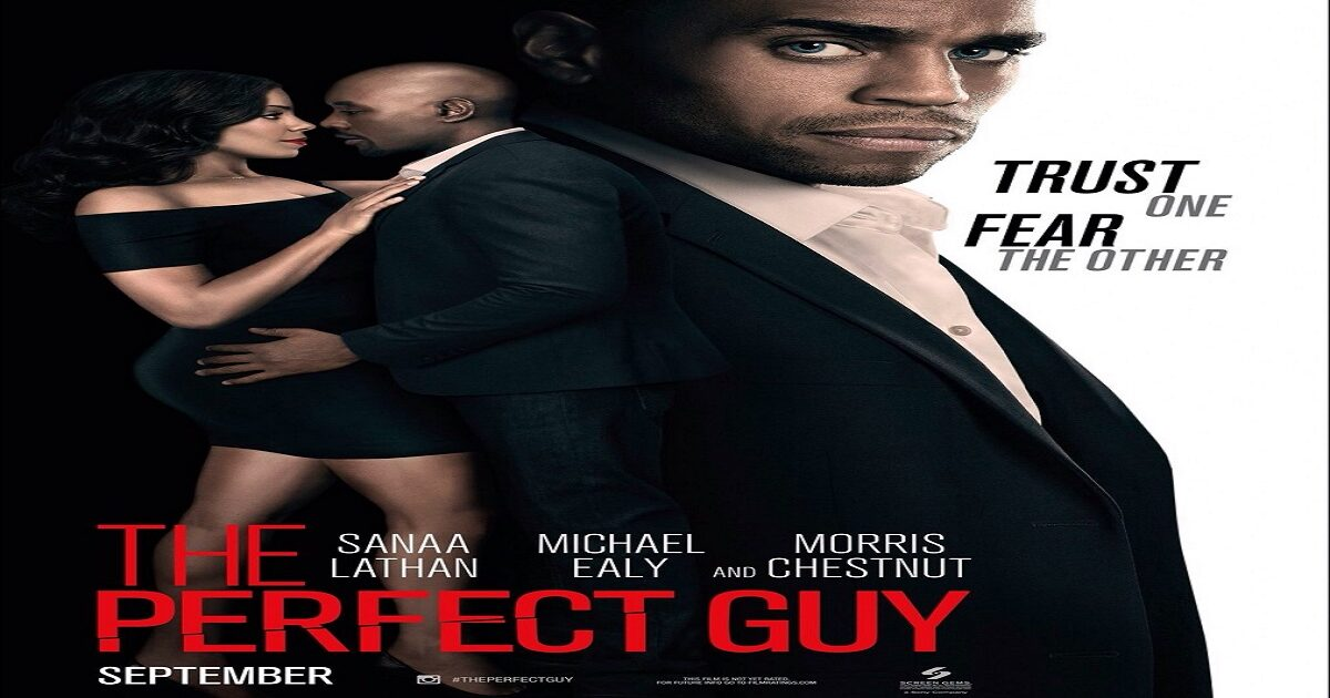 film the perfect guy