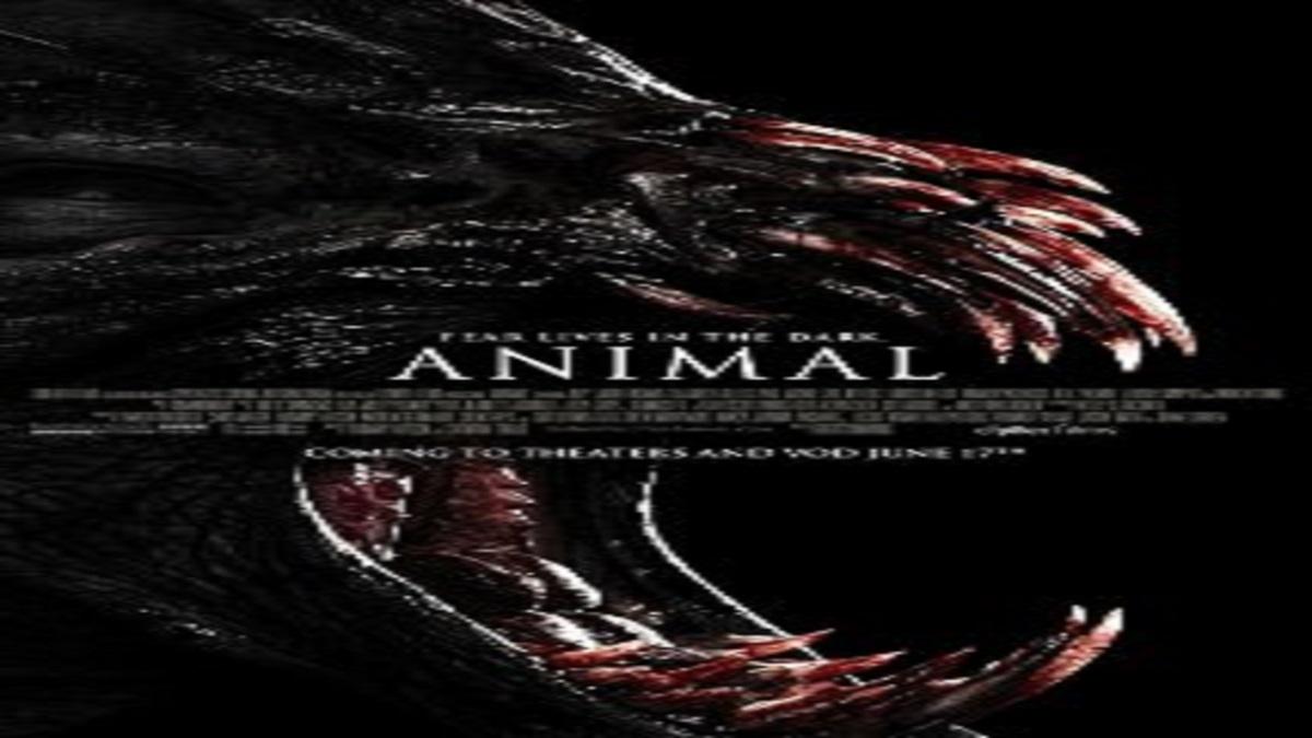 film animal